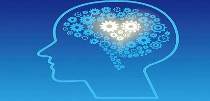 開發大腦的益智游戲合集