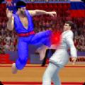 雙打空手道格斗