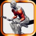 肌肉锻炼指南