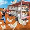 公鸡养殖场
